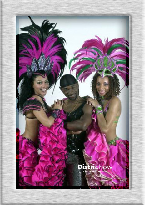 Carnaval du Brésil booking
