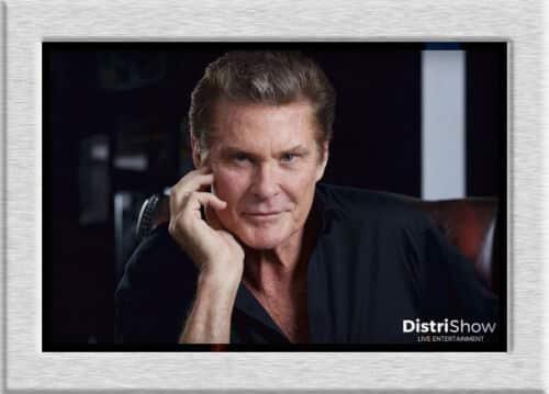 David Hasselhoff booking