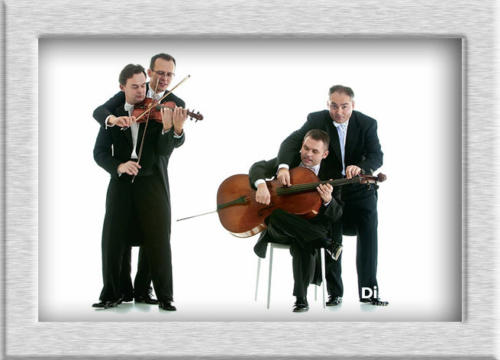 Mozart Group booking