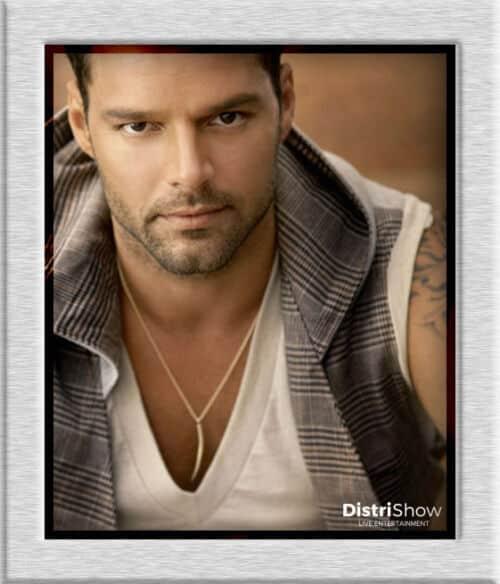Ricky Martin booking