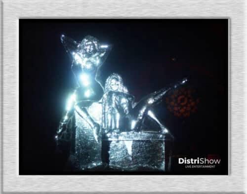 Sculpteur sur Glace booking