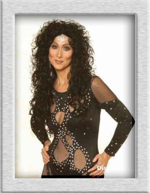 Sosie de Cher booking