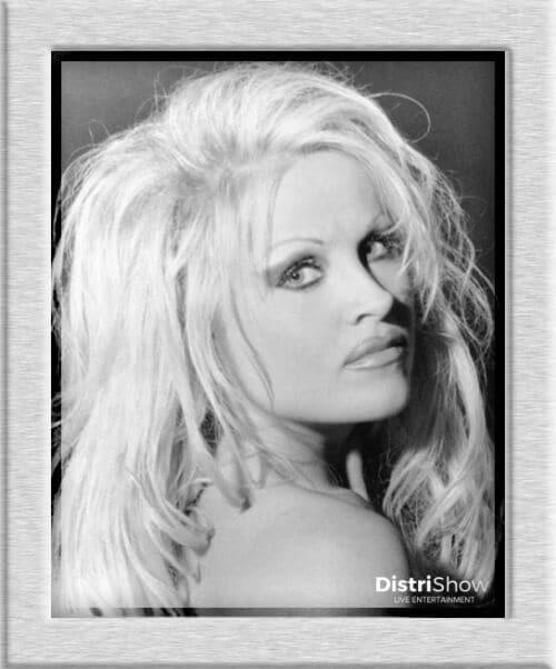 Sosie de Pamela Anderson booking