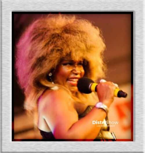 Sosie de Tina Turner booking