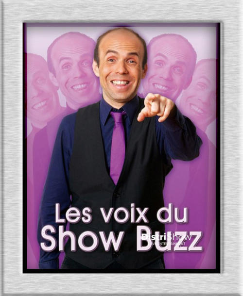SPECTACLE D'IMITATIONS Yann Jamet booking