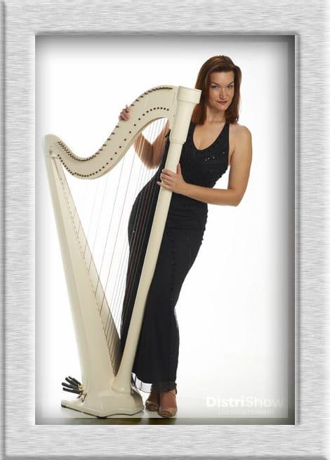 White Harp booking